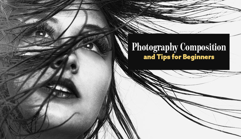 Photography Composition and Tips for Beginners [Digging Deep Into 8]